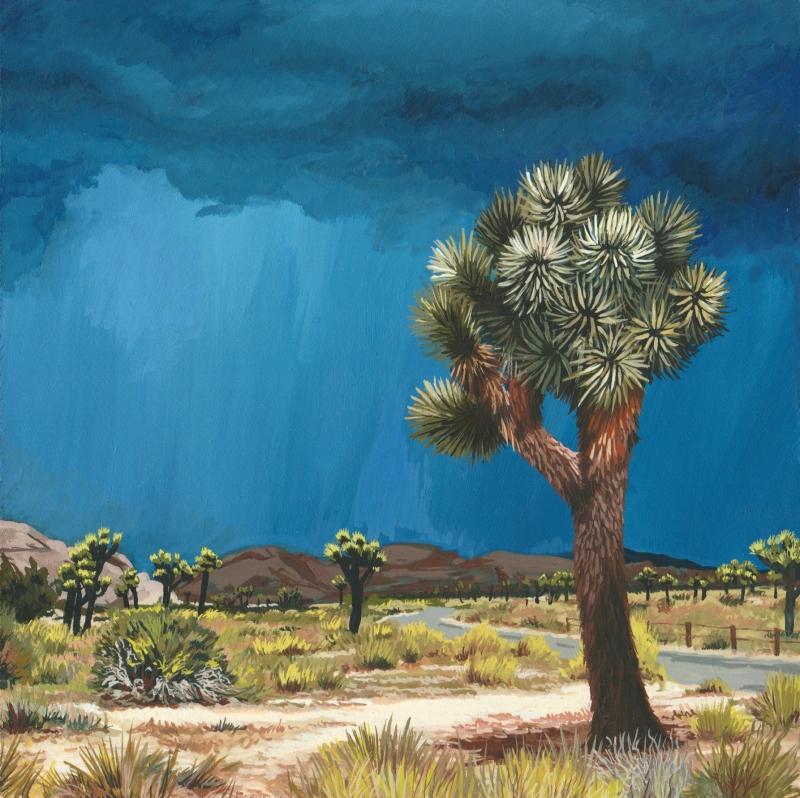 desert-scene