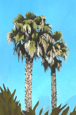 gouache palms